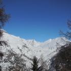 14.2.: Aletschgletscher, Blick aus dem Wald heraus