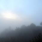 7.10.: Nebelstimmung auf Uto-Kulm