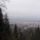 27.11.: Ein trüber November-Abstimmungssonntag: Blick aus der Uetli-Ostflanke auf die Stadt Zürich