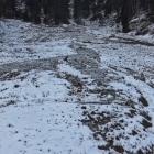 25.2.: Gefrorene Uetliberg-Ostwand