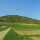 21.4.: Samstags-Panorama I: zwischen Winterthur und Zürich