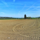 21.4.: Samstags-Panorama II: zwischen Winterthur und Zürich