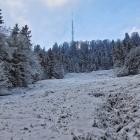 3.1.: Uetliberg-Ostwand mit etwas Schnee