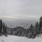 7.1.: Blick aus der verschneiten Uetliberg-Ostwand