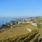 13.10.: Weinberge und kleine Dörfer