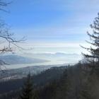4.1.: Uetliberg-Alpenblick