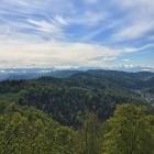 7.5.:  Uetliberg-Panorama