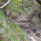 12.5.: Sandsteinformation am Uetliberg