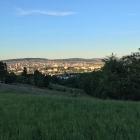 10.7.: Oberhalb Albisrieden