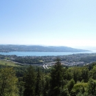 11.8.: Panorama Föhrenegg Uetliberg
