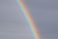 7.12.: Ausschnitt Regenbogen