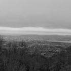 19.11.: Schwarz-Weiss am Uetliberg