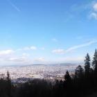 24.11.: aus der Uetliberg-Ostwand
