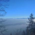 26.12.: Uetliberg über dem Nebel