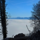 27.12.: Uetliberg-Aussicht über dem  Nebel