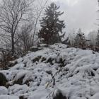 19.11.: Aufsteig zum Uetli im ersten Schnee