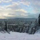 17.12.: Uetliberg-Ostwand