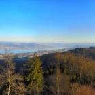 27.2.: Montags-Panorama Uto-Kulm