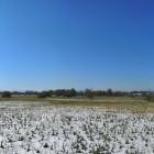 29.4.: Samstags-Panorama I: Blick über Aprilschnee-Robenhuserriet (am Chämtnerbach)