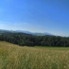 18.6.: Panorama Schweikhof