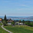 18.6.: Horgenberg, die Alp über Zürich?