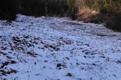 30.1.: Schnee am Uetliberg
