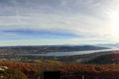 30.1.: Uetliberg-Panorama