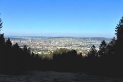 18.3.: Blick über die Stadt Zürich beim Aufstieg zum Uetliberg