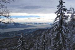 4.12.: Schneestimmung am Uetliberg